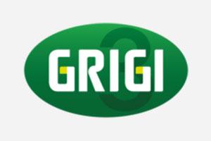 gruppo_grigi